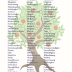 Tugend Plakat – Motiv Baum